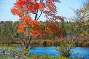 2014-10-Fall-Drive-0045